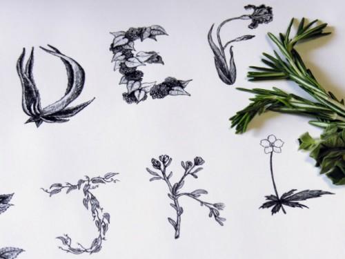 树叶手工制作创意印画