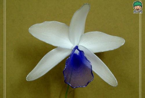 最新丝网花制作图片 石斛兰的制作方法