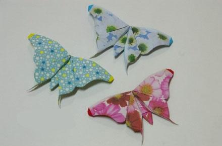 教你折漂亮的孔雀 大家说哪一只好看呢?折纸大全视频教程