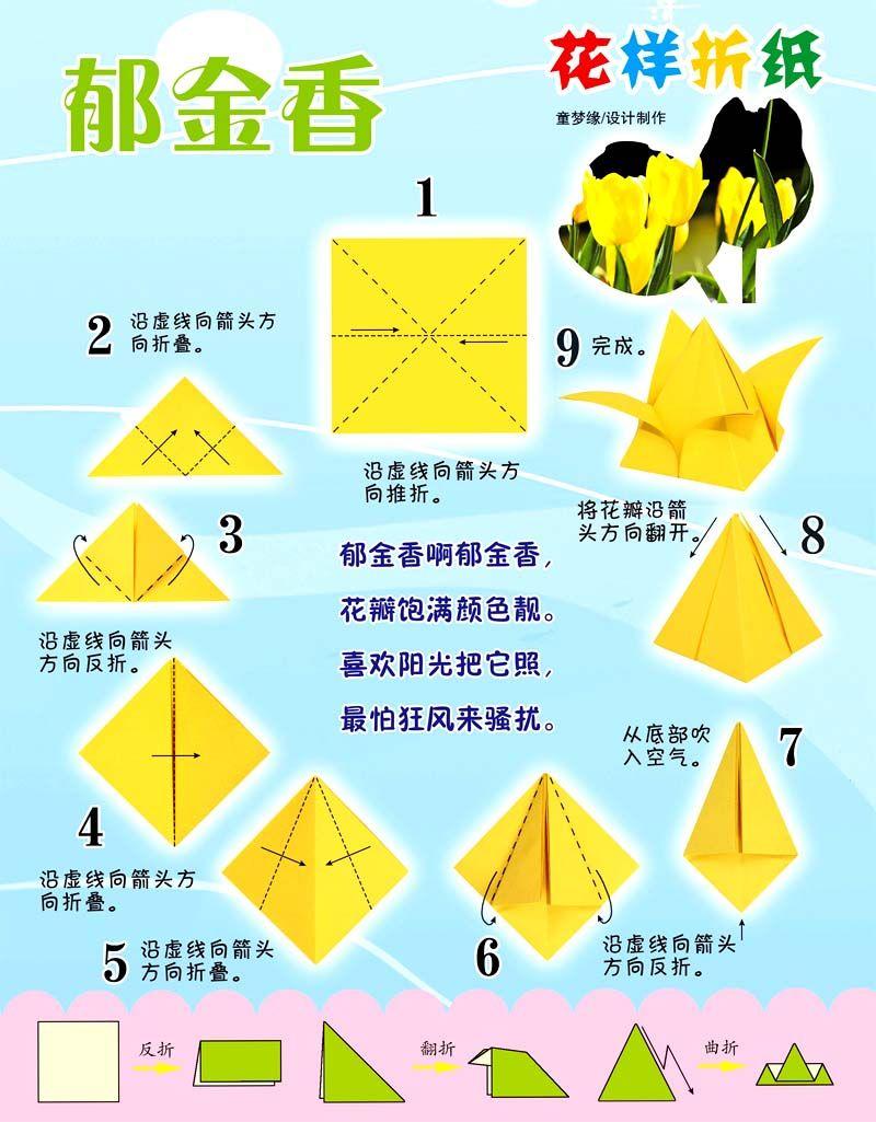 折郁金香教程——花样郁金香的折法