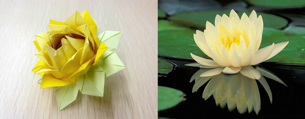 手工折纸莲花折法 祈福莲花的折纸教程-封存