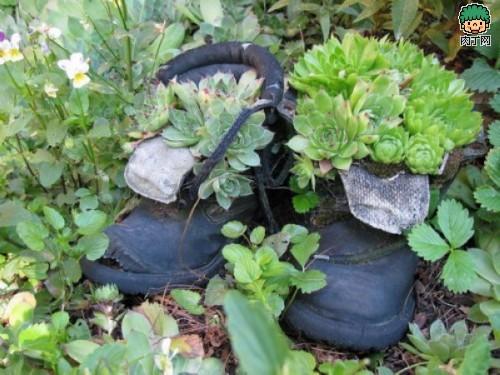 旧鞋怎么处理 旧鞋变花盆的35个DIY多姿多彩样例