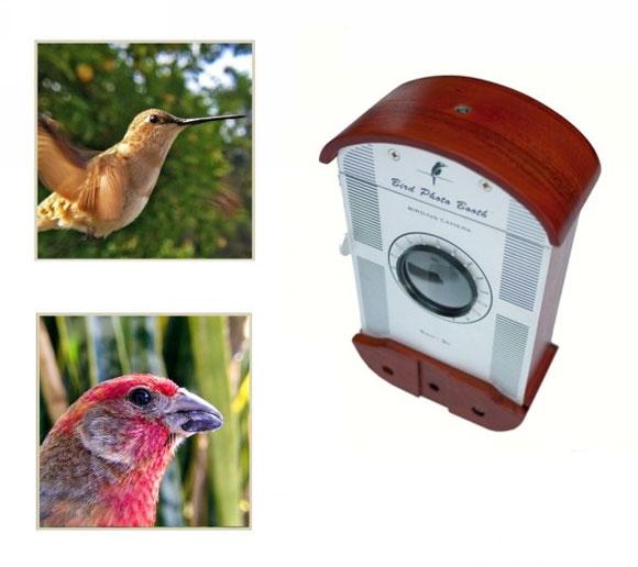 http://shaoer.cntv.cn/children/C25029/20121031/images/1351651411932_Bird_Photo_Booth_1.jpg