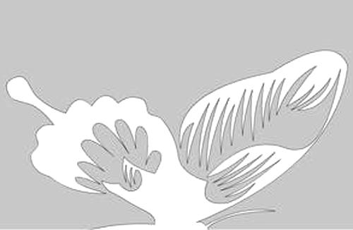 简单的蝴蝶剪纸图案-封存