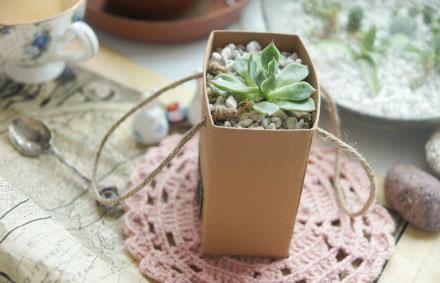 利用废旧纸盒diy环保纸花盆的方法图解