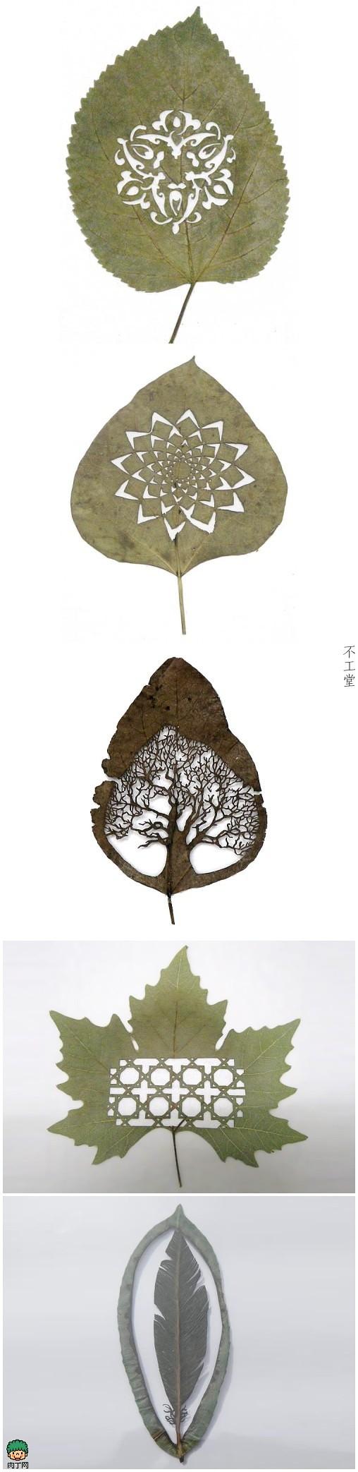 巧夺天工的精致树叶剪纸欣赏