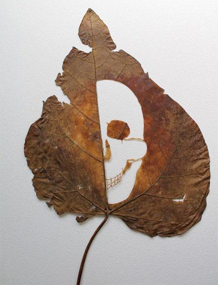树叶雕刻-唯美的树叶镂空雕刻多图赏析